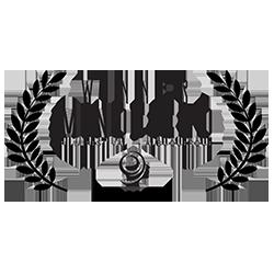Mindfield Film Festival
